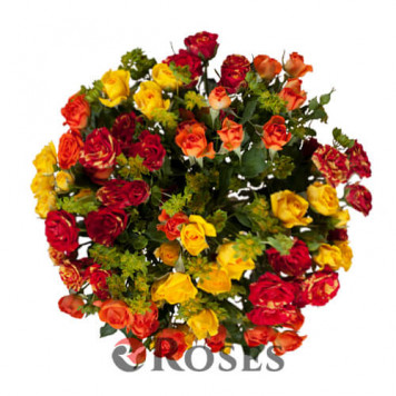 "Bouquet ""Idaho"" 15 shrub roses"